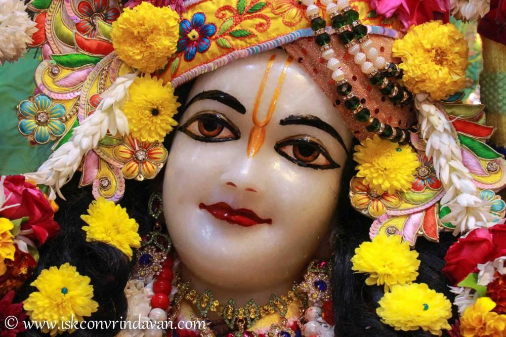 ISKCON Vrindavan Sringar Deity Darshan 20 Dec 2015 (7)