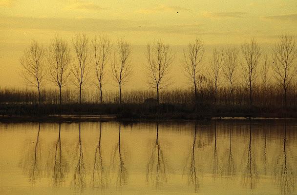 il lago della malinconia di elena_magnani