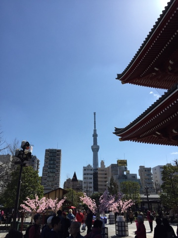 View of Tokyo Skytree from Sensoji Temple