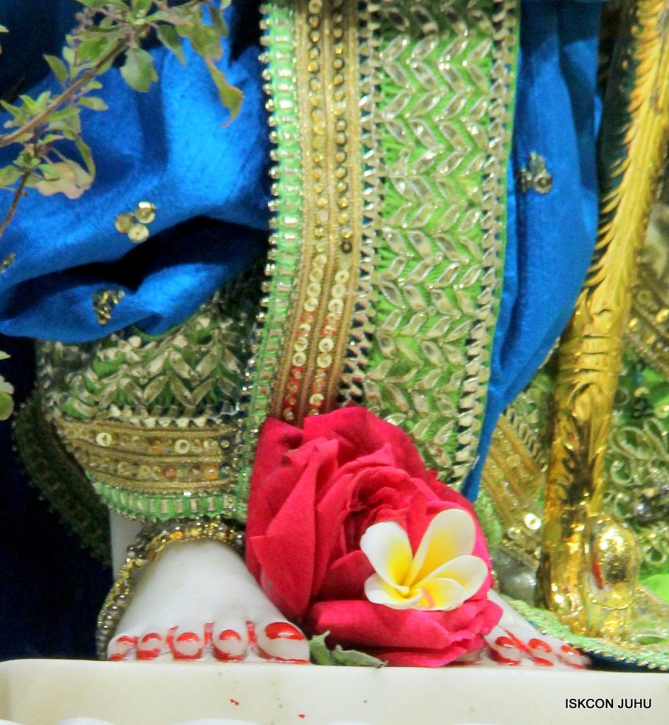 ISKCON Juhu Mangal Deity Darshan on 20th Jan 2017 (12)