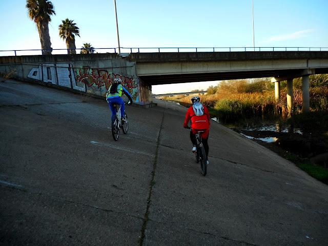 Rutas en bici. - Página 3 Inclinada%252520y%252520toststada%252520guapaa%252520027