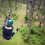 treesadventure4.jpg