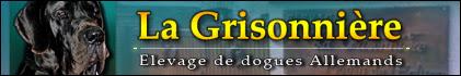 Bannière Grisonnière