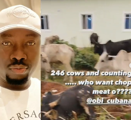 Over 200 cows: ''Being good didn't get Cubana those gifts, being rich did''- Nigerian Medical doctor opines
