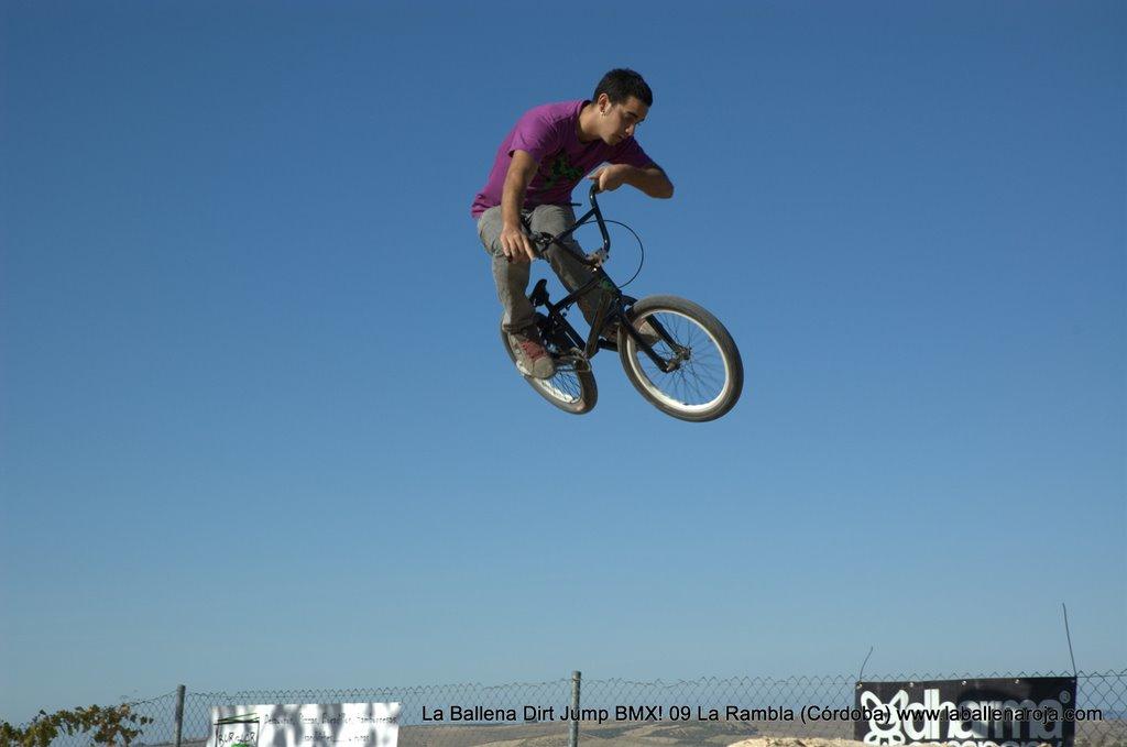 Ballena Dirt Jump BMX 2009 - BMX_09_0034.jpg