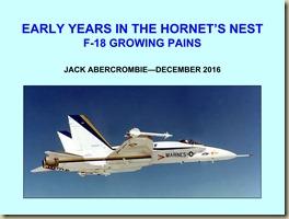 F-18-HORNET'S NEST_01