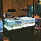2003 - MACNA XV - Louisville - v_ecosystems.jpg