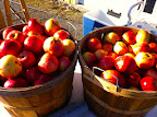 Cidermaking November 30