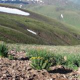 Alabel Pass dans le Talas Alatau, 27 juin 2006. Photo : E. Zinszner