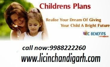 Lic Insurance Agent in Chandigarh (lic office lic agent lic in chandigarh,9988222260)