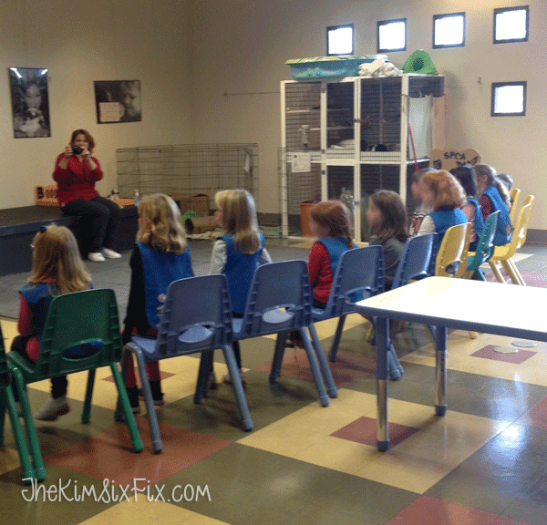 Animal shelter learning tour