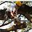Smyrna Tree Removal Experts's profile photo