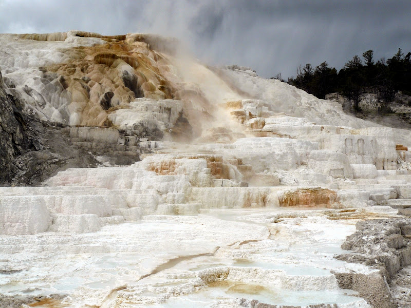 Mammoth Hot Springs - Palette Spring