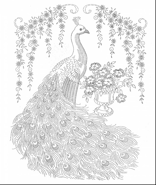 Superb Peacock Adult Coloring Pages Printable With Hard Coloring Pages For  Adults And Hard Coloring Pages