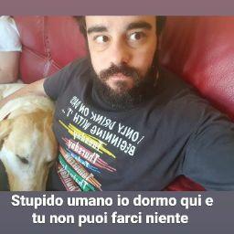 Andrea Rossino