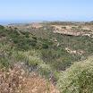 laguna-coast-wilderness-el-moro-018.jpg