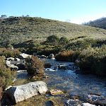 Thredbo River near Cascade Trail head (283778)