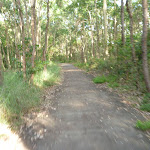 Green Point Reserve (390014)