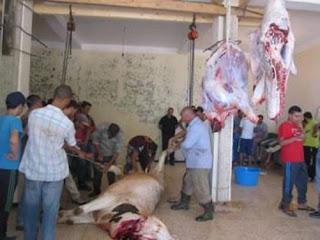 Très en vogue ces dernières années en kabylie: Quand le boeuf remplace le mouton
