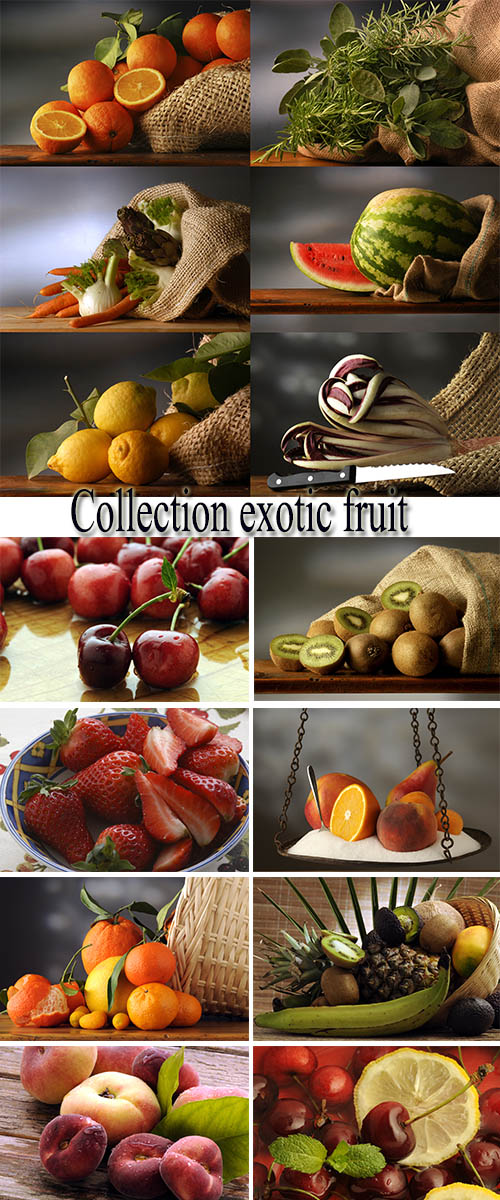 Stock Photo: Collection exotic fruit