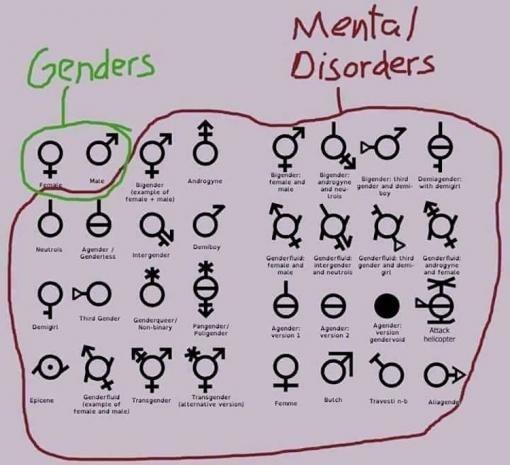 [gender+studies%5B3%5D]