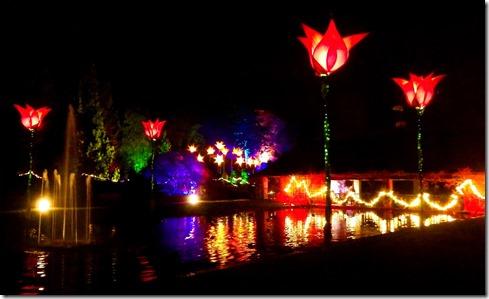 Wisley Christmas Glow 2016