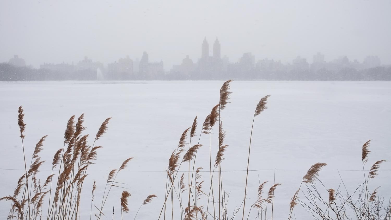Central Park Reservoir Winter