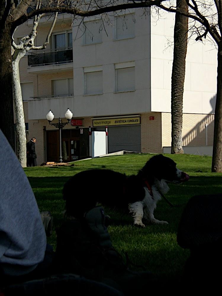 Sortida Sant Salvador de les espasses 2006 - CIMG8458.JPG