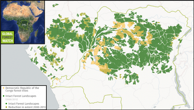 Reduction in intact forest landscapes in DRC, 2000-2013. Industrial logging concessions already occupy huge swaths of DRC rainforest IFLs. Conservationists worry that ending the country's current moratorium on new industrial logging licenses could put the country's remaining primary forests at risk – and hurt efforts to stem global warming by keeping the DRCs forests in the ground. Graphic: Global Forest Watch