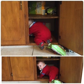 Henry in the Cupboard