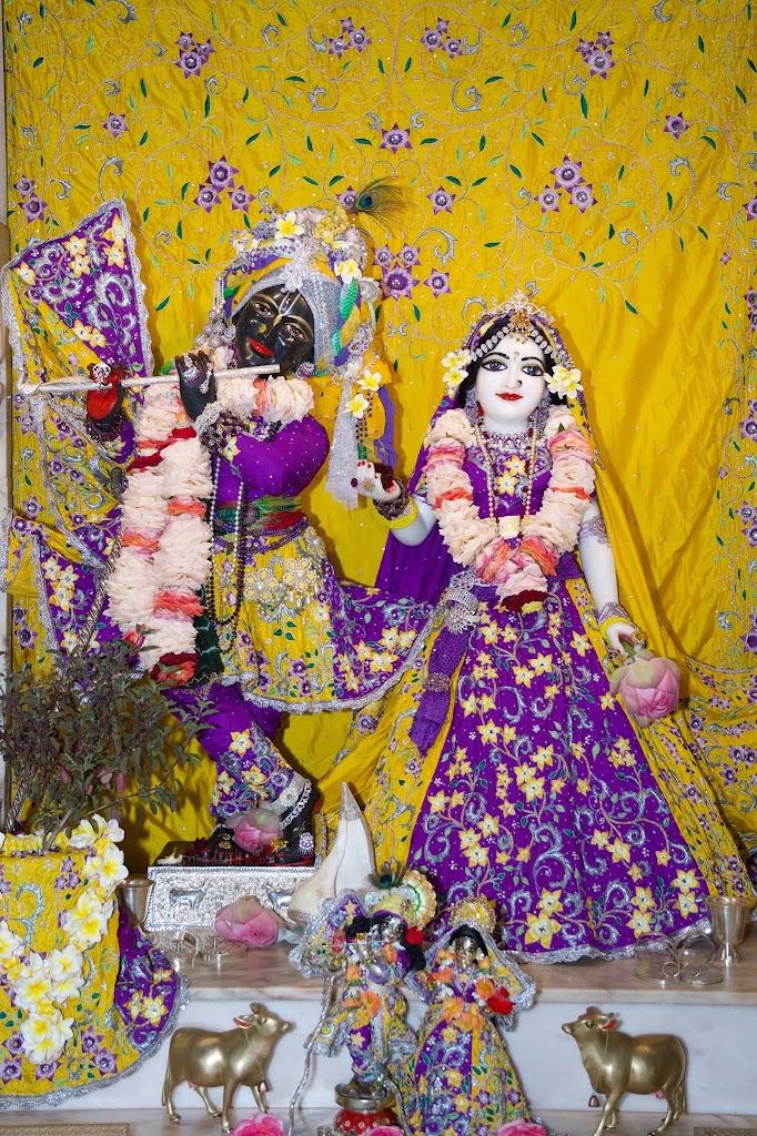 ISKCON New Govardhana Deity Darshan 22 Dec 2016 (40)