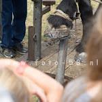 boerendag_alphen-2015-114.jpg