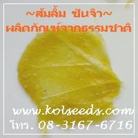 ลักษณะเด่นของส้มลิ้มพิจิตร คือ แผ่นบางประทับรอยใบไม้