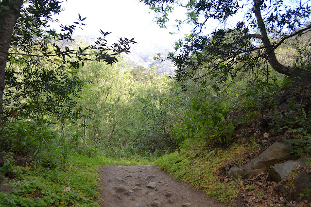 Romero Canyon Road