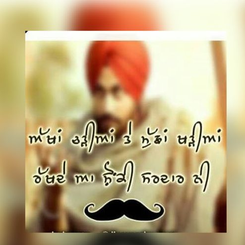 mustaches dp