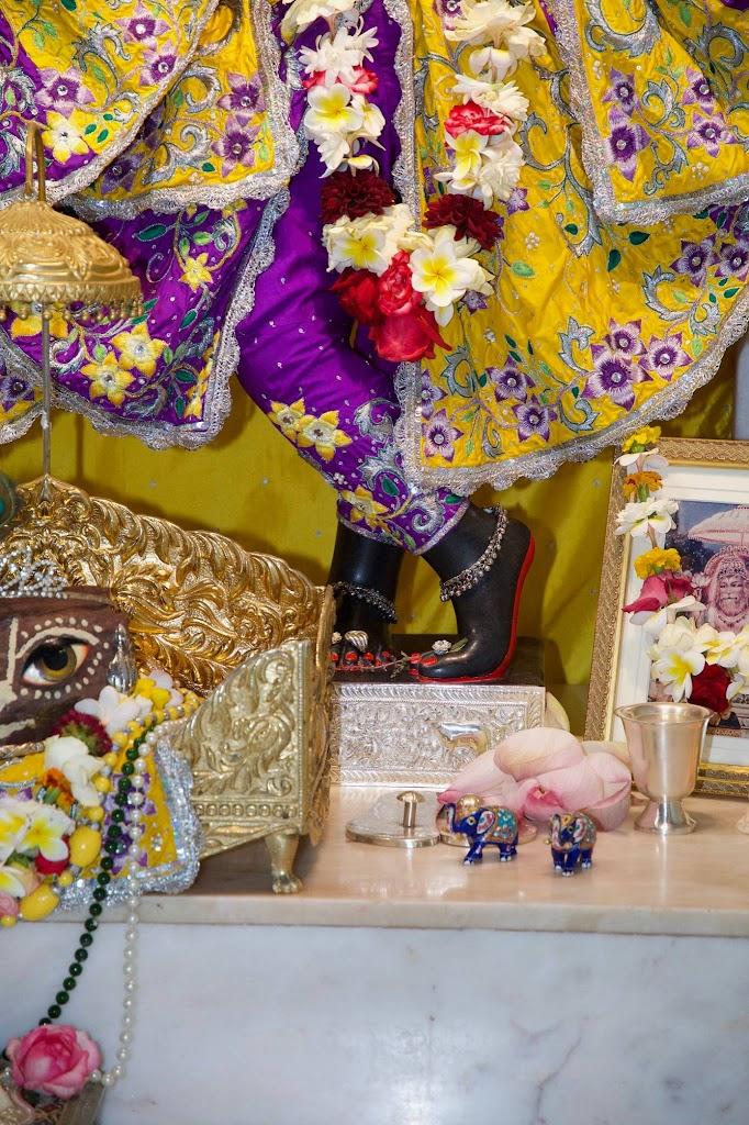 ISKCON New Govardhana Deity Darshan 22 Dec 2016 (2)