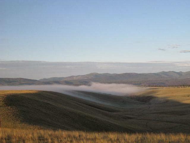 Fog over the grasslands