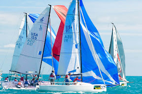 J70s sailing Key West