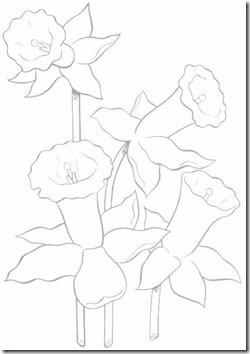 11flores primavera colorear  (50)