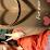 Mini Kiss's profile photo