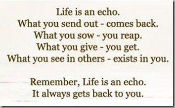 life is an echo 9
