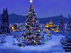 Christmas-Tree-Nature1024.jpg