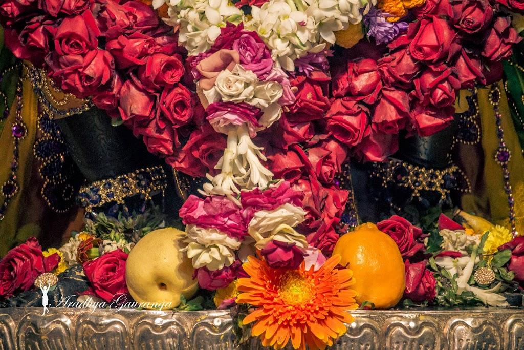 ISKCON Mayapur Deity Darshan 31 Dec 2016 (24)
