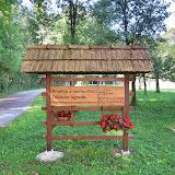 Okolica kmetije-surroundings - IMG_1587.jpg