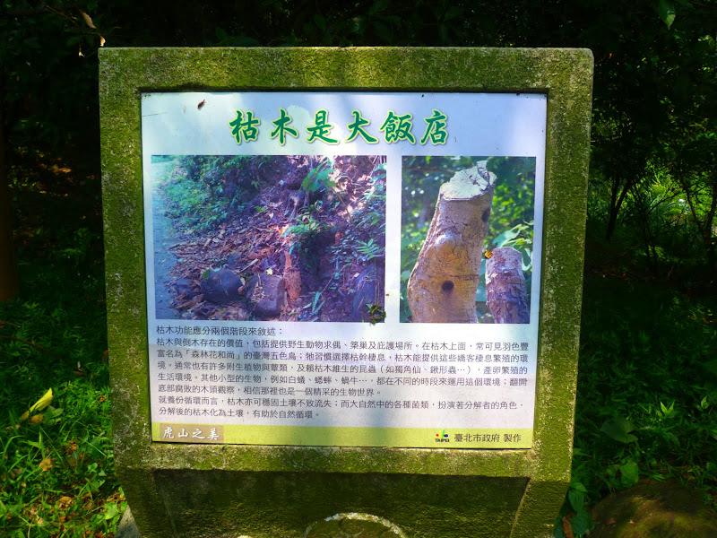Taipei. Si Shou Shan, et la découverte des maisonnettes du professeur Y I   易教授 - P1340646.JPG