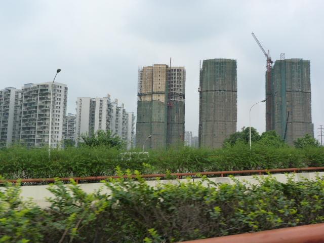 CHINE.SICHUAN.PING LE à 2 heures de Chengdu. Ravissant .Vallée des bambous - P1070658.JPG