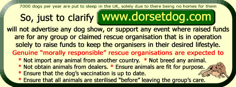 Choose a morally responsible dog rescue charity