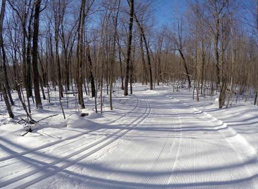 North Loup groomed skate and classic/track Thursday morning