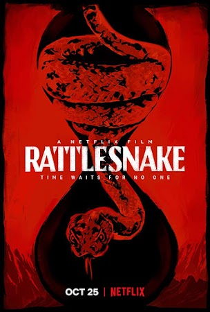 Poster Of Rattlesnake 2019 In Hindi Bluray 720P Free Download