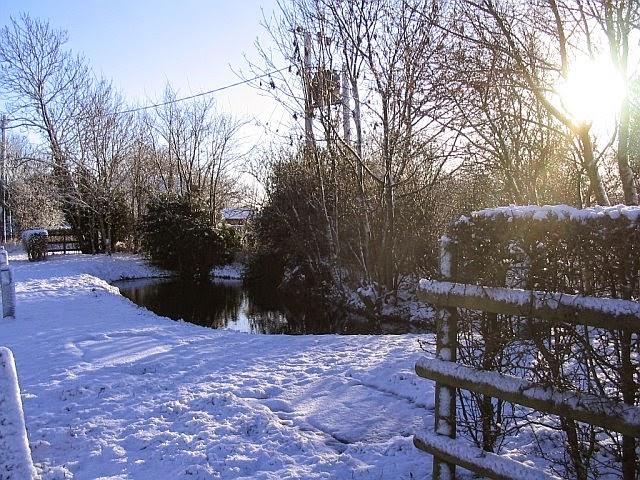 Woodhurst In The Snow - 5346498510233_0_BG.jpg